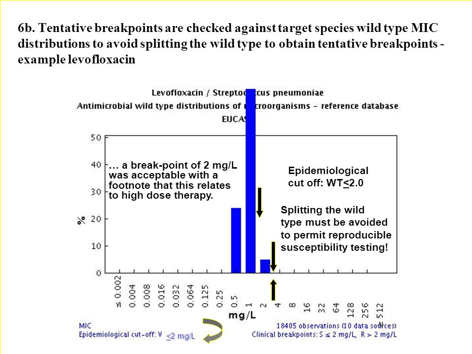 6b. Tentative breakpoints are checked against target species wild type MIC distributions to avoid splitting the wild type to obtain tentative breakpoi
