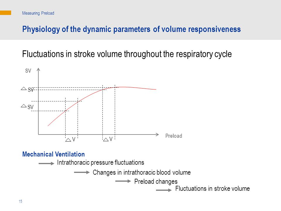 SV Preload V SV V Mechanical Ventilation Measuring Preload Fluctuations in stroke volume Intrathoracic pressure fluctuations Changes in intrathoracic blood volume Preload changes 15 Fluctuations in stroke volume throughout the respiratory cycle Physiology of the dynamic parameters of volume responsiveness