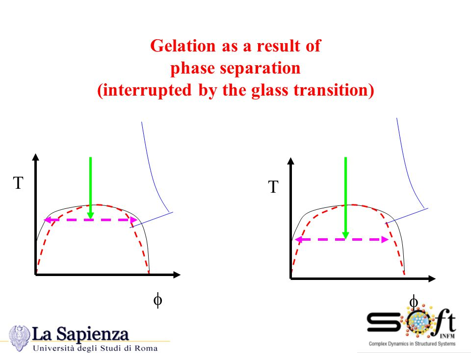 Gelation as a result of phase separation (interrupted by the glass transition) T T  