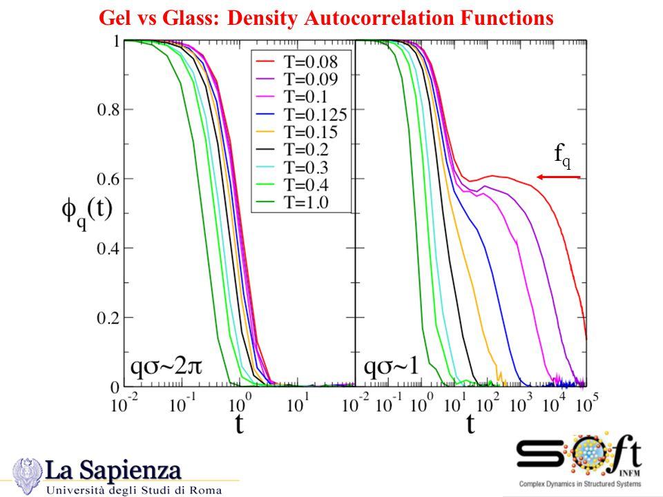 Gel vs Glass: Density Autocorrelation Functions fqfq
