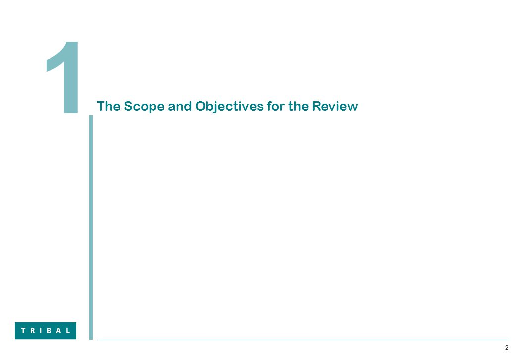 2 1 The Scope and Objectives for the Review