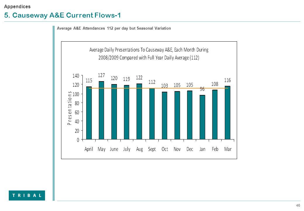 46 5. Causeway A&E Current Flows-1 Average A&E Attendances 112 per day but Seasonal Variation Appendices