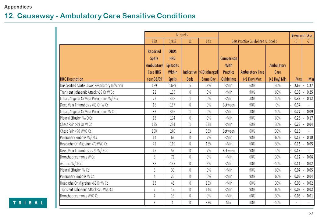 53 12. Causeway - Ambulatory Care Sensitive Conditions Appendices