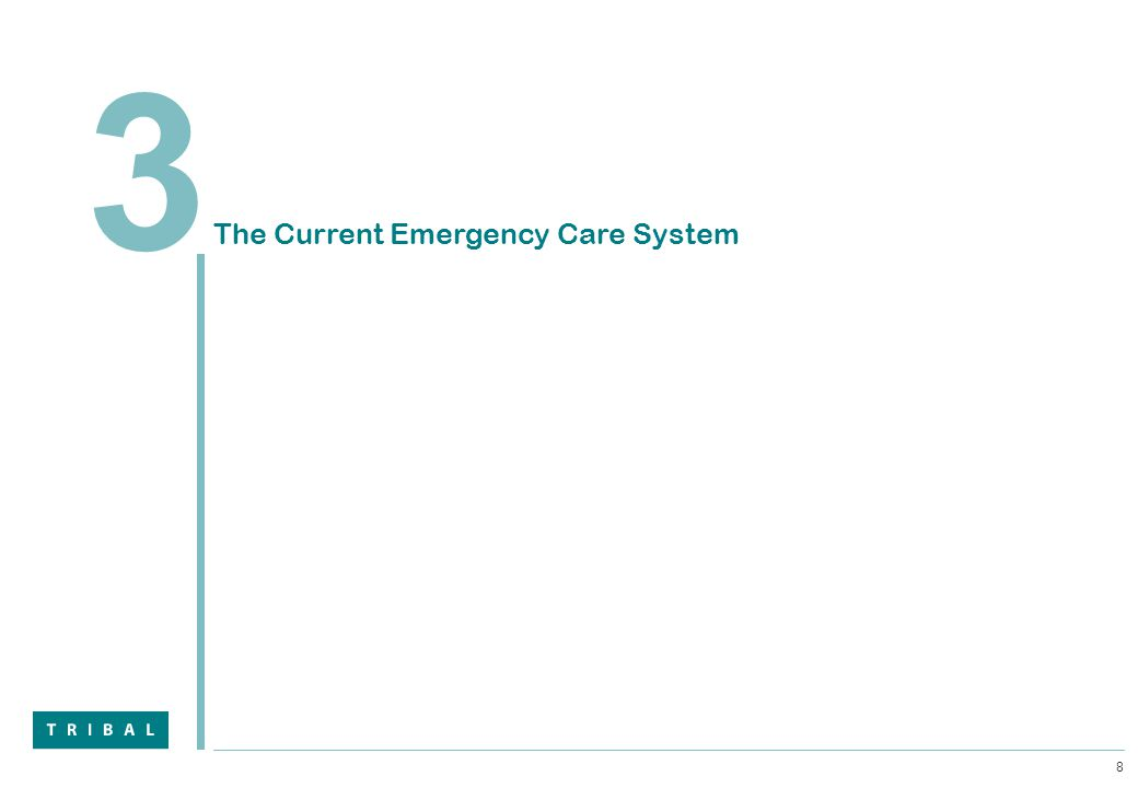 8 3 The Current Emergency Care System