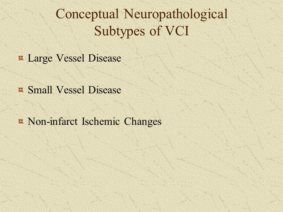 Conceptual Neuropathological Subtypes of VCI Large Vessel Disease Small Vessel Disease Non-infarct Ischemic Changes
