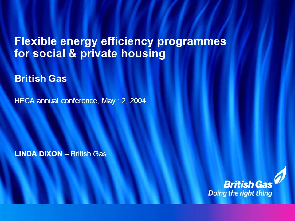 Flexible energy efficiency programmes for social & private housing British Gas HECA annual conference, May 12, 2004 LINDA DIXON – British Gas