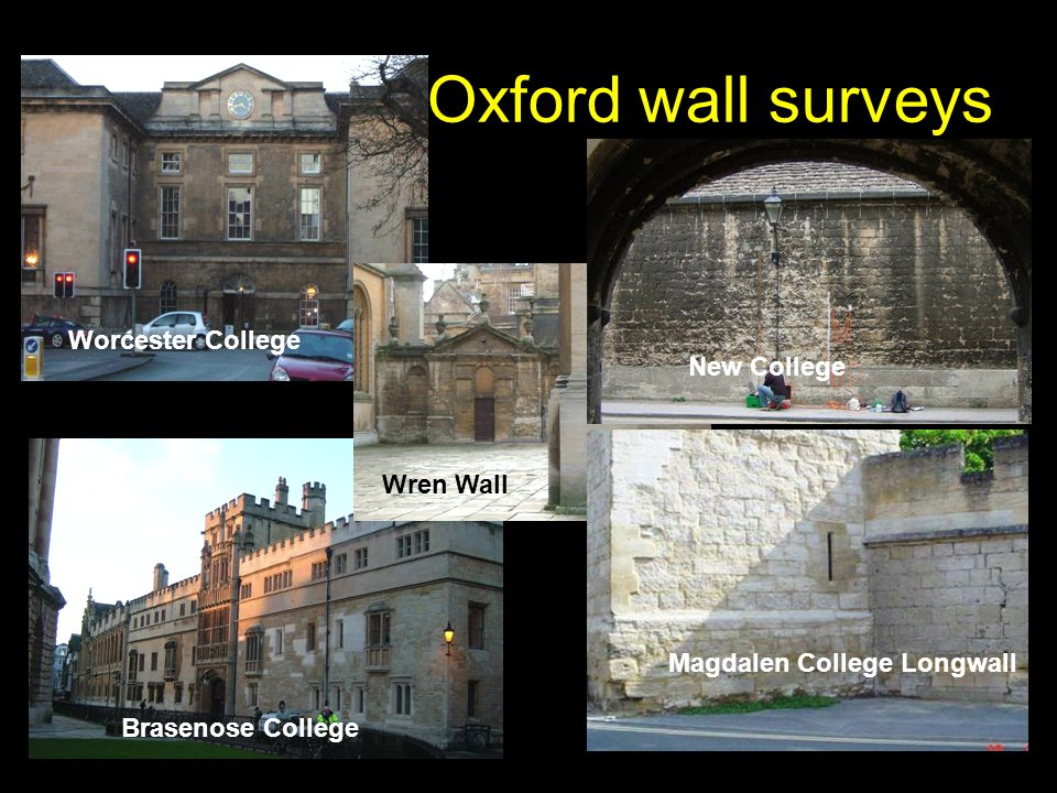 Oxford wall surveys Brasenose College Worcester College Wren Wall New College Magdalen College Longwall