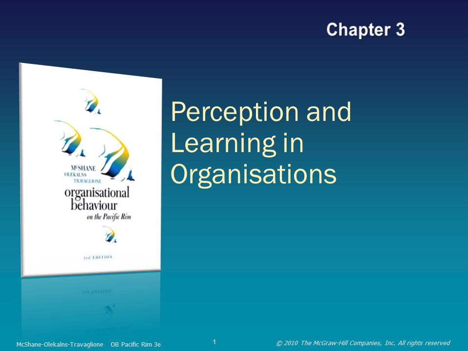 Perception and Learning in Organisations McShane-Olekalns-Travaglione OB Pacific Rim 3e © 2010 The McGraw-Hill Companies, Inc.