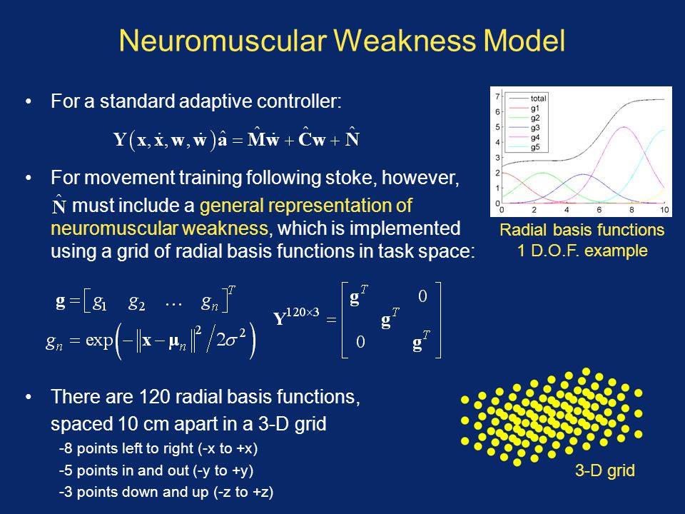 Neuromuscular Weakness Model For a standard adaptive controller: For movement training following stoke, however, must include a general representation
