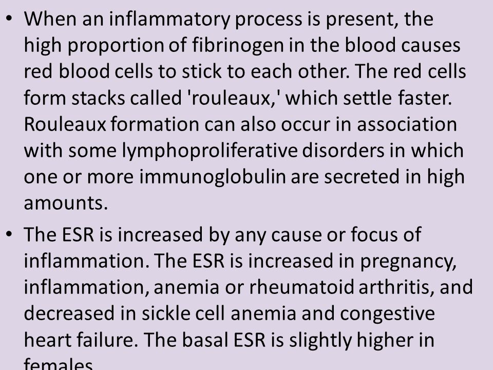 When an inflammatory process is present, the high proportion of fibrinogen in the blood causes red blood cells to stick to each other. The red cells f