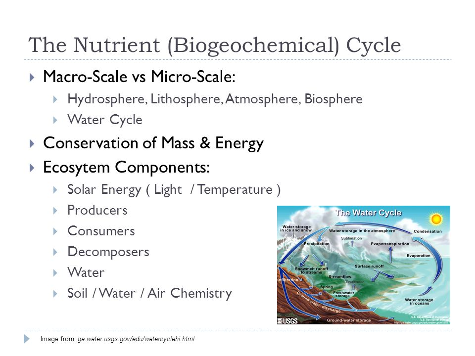  Macro-Scale vs Micro-Scale:  Hydrosphere, Lithosphere, Atmosphere, Biosphere  Water Cycle  Conservation of Mass & Energy  Ecosytem Components:  Solar Energy ( Light / Temperature )  Producers  Consumers  Decomposers  Water  Soil / Water / Air Chemistry The Nutrient (Biogeochemical) Cycle Image from: ga.water.usgs.gov/edu/watercyclehi.html