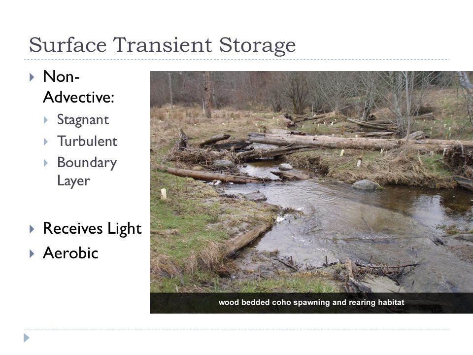 Surface Transient Storage  Non- Advective:  Stagnant  Turbulent  Boundary Layer  Receives Light  Aerobic