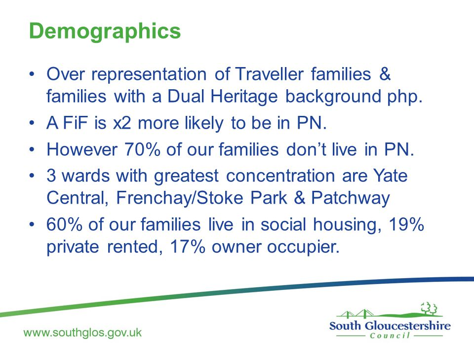 Demographics Over representation of Traveller families & families with a Dual Heritage background php.