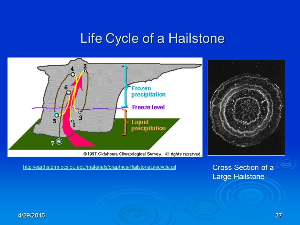 4/29/201537 Life Cycle of a Hailstone http://earthstorm.ocs.ou.edu/materials/graphics/HailstoneLifecycle.gif Cross Section of a Large Hailstone