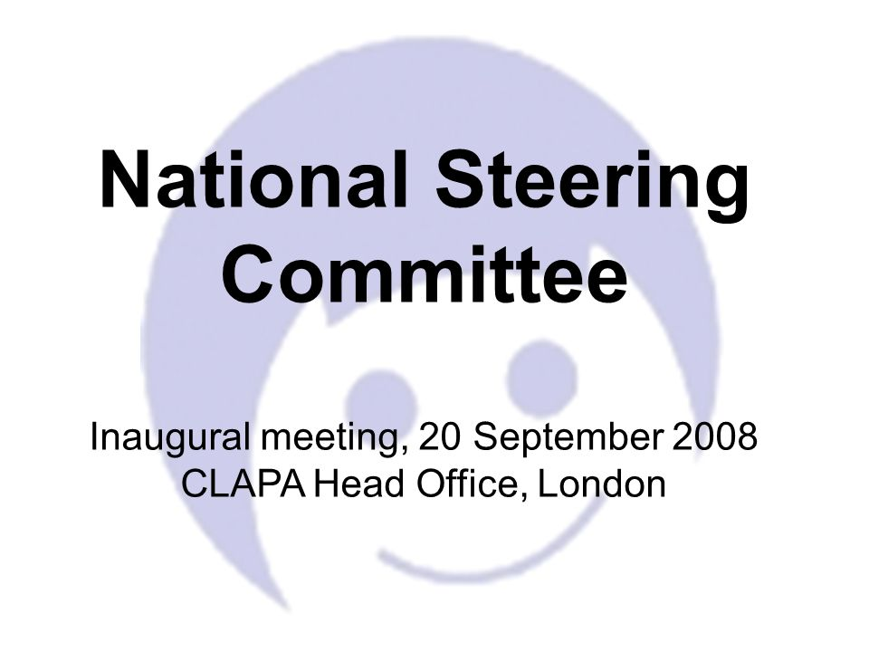 National Steering Committee Inaugural meeting, 20 September 2008 CLAPA Head Office, London
