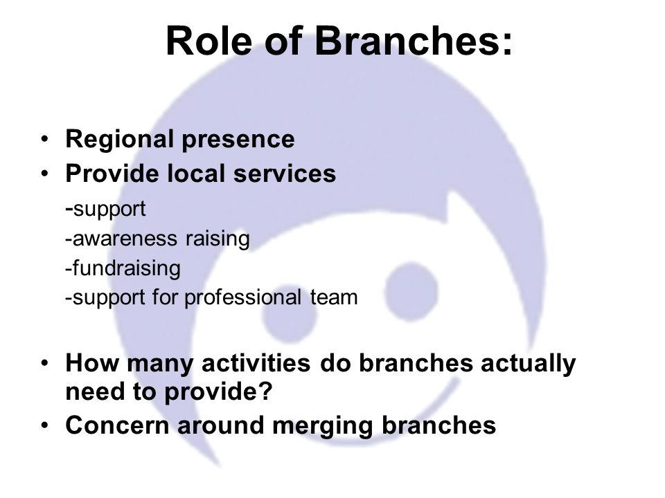 Regional presence Provide local services - support -awareness raising -fundraising -support for professional team How many activities do branches actually need to provide.