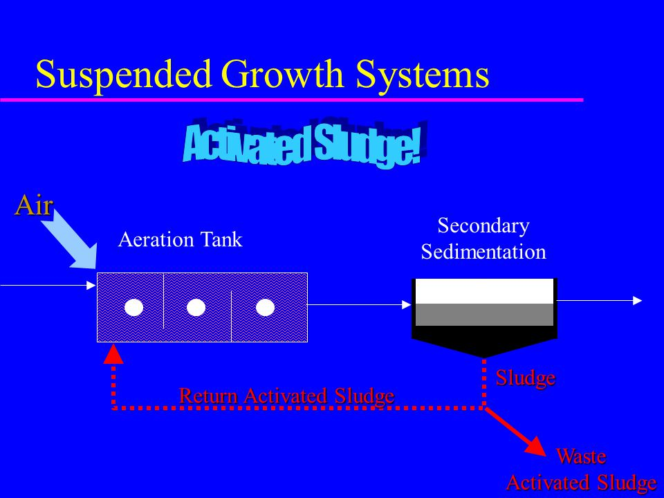 Suspended Growth Systems Sludge Secondary Sedimentation Return Activated Sludge Waste Activated Sludge Aeration TankAir