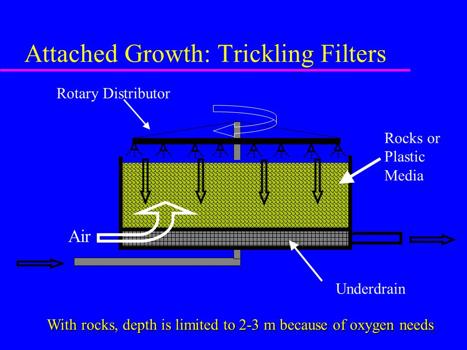 Attached Growth: Trickling Filters Rocks or Plastic Media Underdrain Rotary Distributor With rocks, depth is limited to 2-3 m because of oxygen needs Air