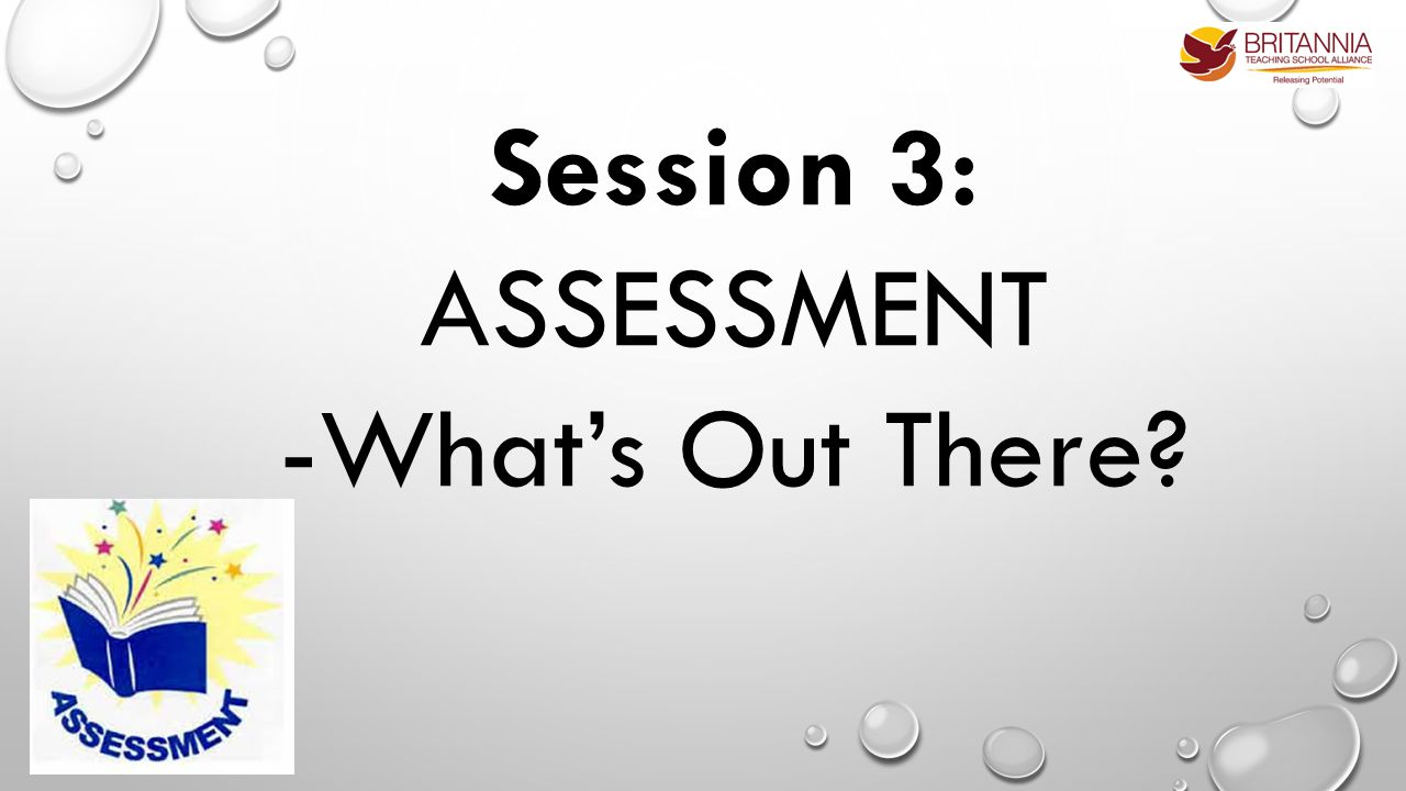 Session 3: ASSESSMENT -What's Out There?