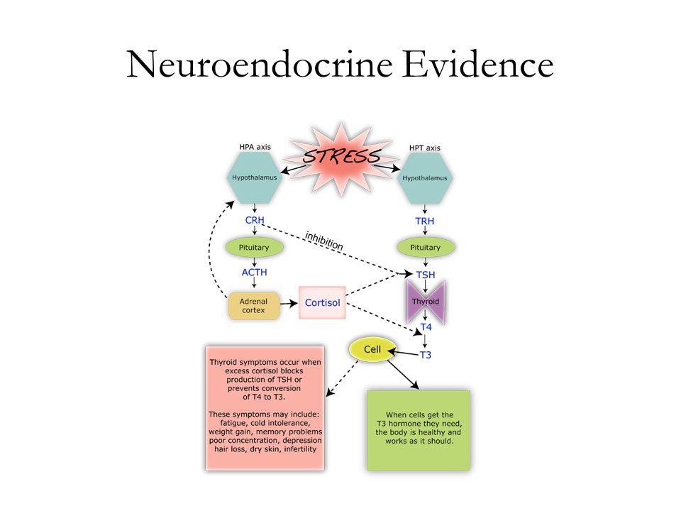 Neuroendocrine Evidence