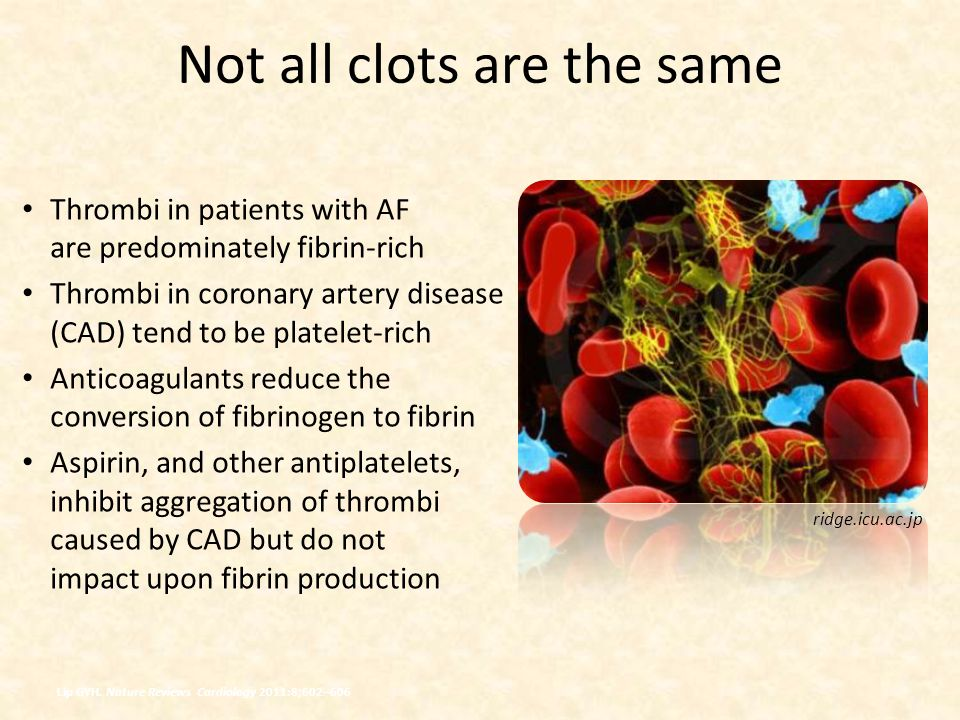 Not all clots are the same Thrombi in patients with AF are predominately fibrin-rich Thrombi in coronary artery disease (CAD) tend to be platelet-rich Anticoagulants reduce the conversion of fibrinogen to fibrin Aspirin, and other antiplatelets, inhibit aggregation of thrombi caused by CAD but do not impact upon fibrin production ridge.icu.ac.jp Lip GYH.