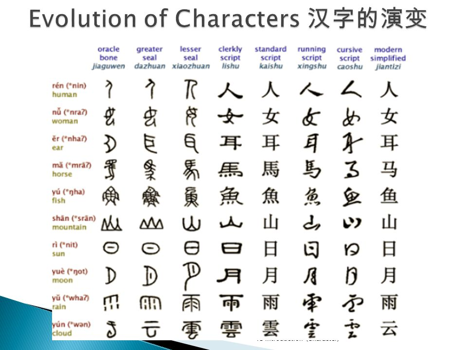 Review the Basic Strokes diǎn shù piě gōu tí nà piě hén g A stroke is a single unbroken line drawn from the time you set your pen to paper and move it till the time you lift it off the paper.