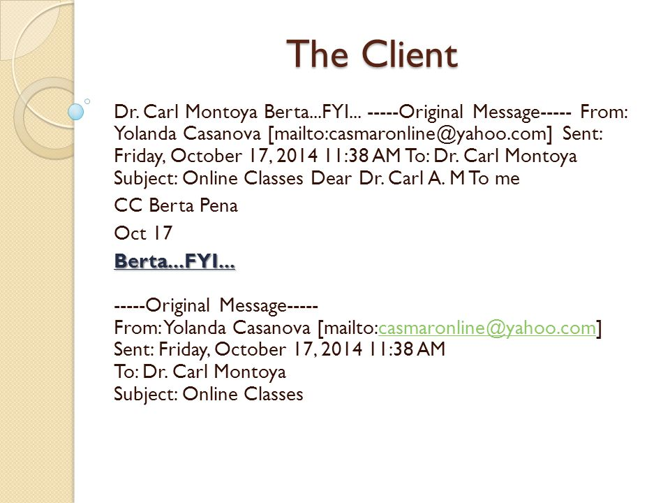 The Client The clients feedback consisted of: 1.