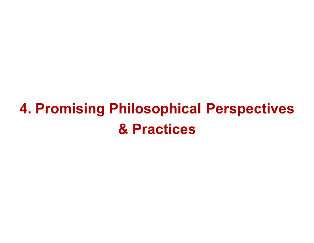 4. Promising Philosophical Perspectives & Practices