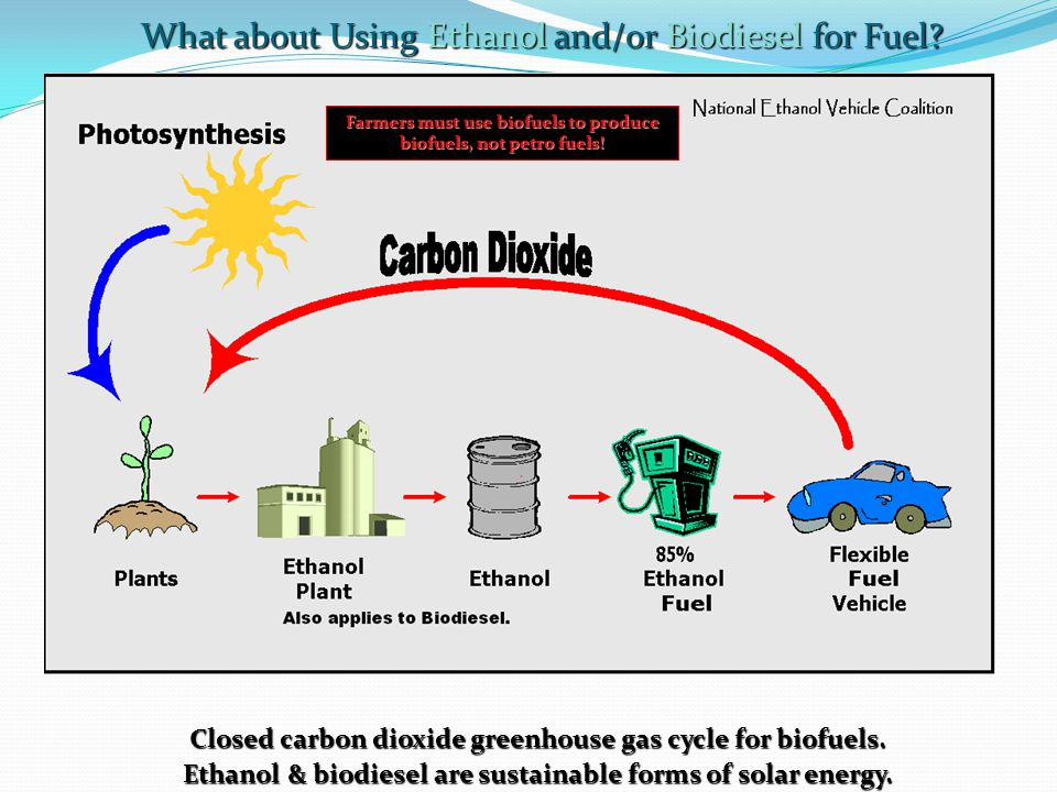 Closed carbon dioxide greenhouse gas cycle for biofuels.