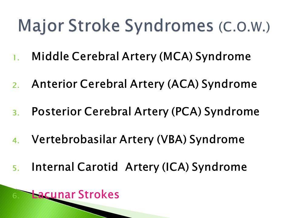 1. Middle Cerebral Artery (MCA) Syndrome 2. Anterior Cerebral Artery (ACA) Syndrome 3. Posterior Cerebral Artery (PCA) Syndrome 4. Vertebrobasilar Art