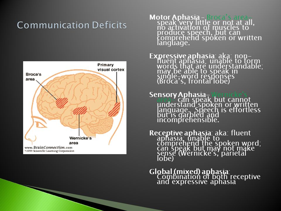 Motor Aphasia – Broca's area- speak very little or not at all, no activation of muscles to produce speech, but can comprehend spoken or written langua