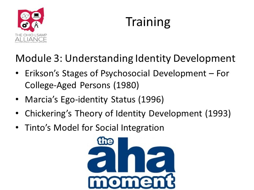 Training Module 3: Understanding Identity Development Erikson's Stages of Psychosocial Development – For College-Aged Persons (1980) Marcia's Ego-identity Status (1996) Chickering's Theory of Identity Development (1993) Tinto's Model for Social Integration