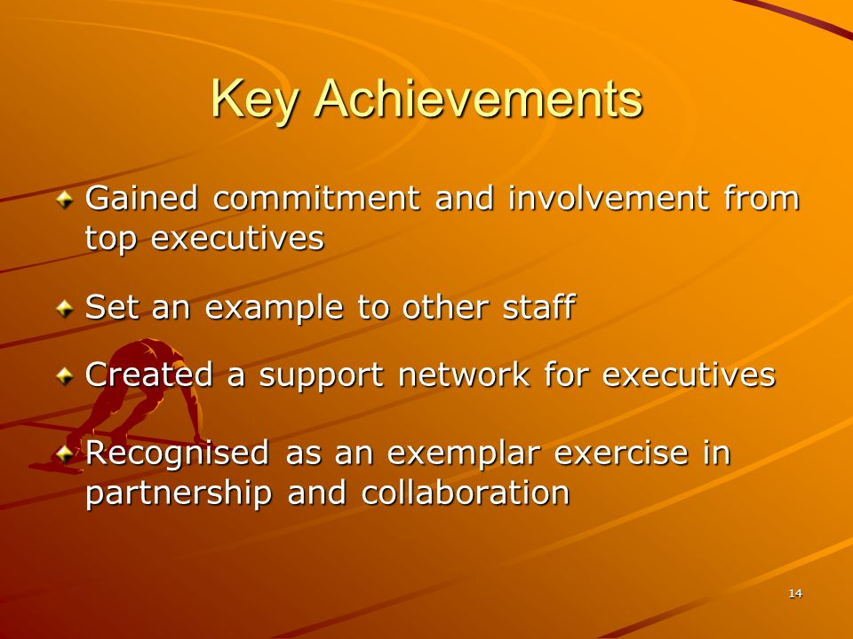 14 Key Achievements Gained commitment and involvement from top executives Set an example to other staff Created a support network for executives Recognised as an exemplar exercise in partnership and collaboration