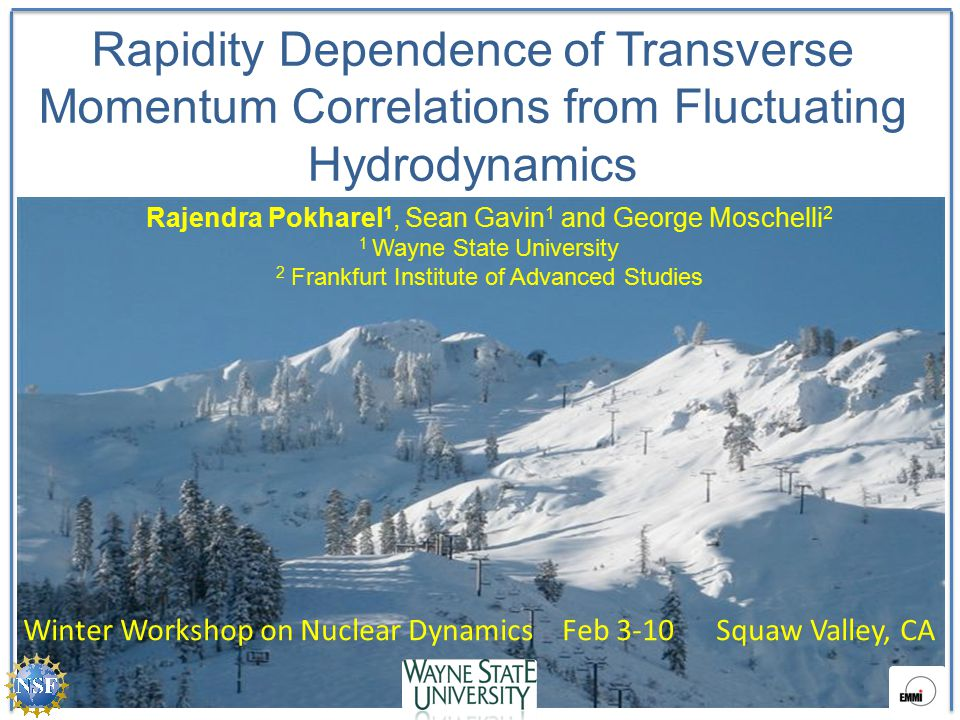 Rapidity Dependence of Transverse Momentum Correlations from Fluctuating Hydrodynamics Rajendra Pokharel 1, Sean Gavin 1 and George Moschelli 2 1 Wayne State University 2 Frankfurt Institute of Advanced Studies Winter Workshop on Nuclear Dynamics Feb 3-10 Squaw Valley, CA