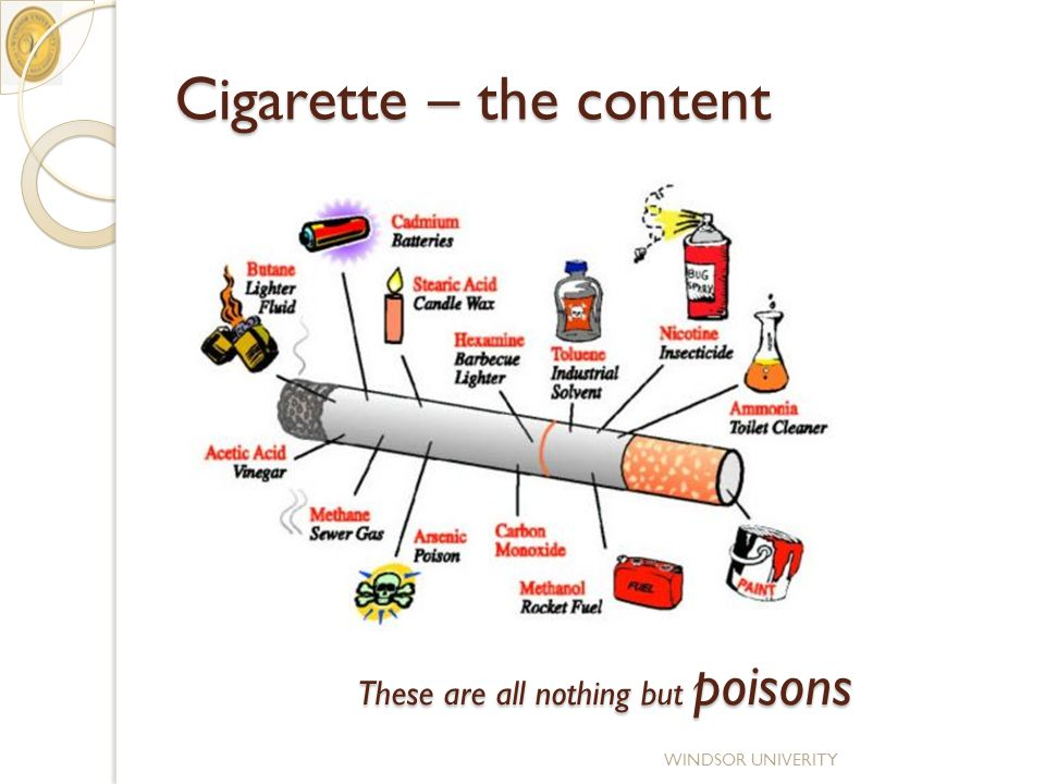 Cigarette – the content WINDSOR UNIVERITY These are all nothing but poisons