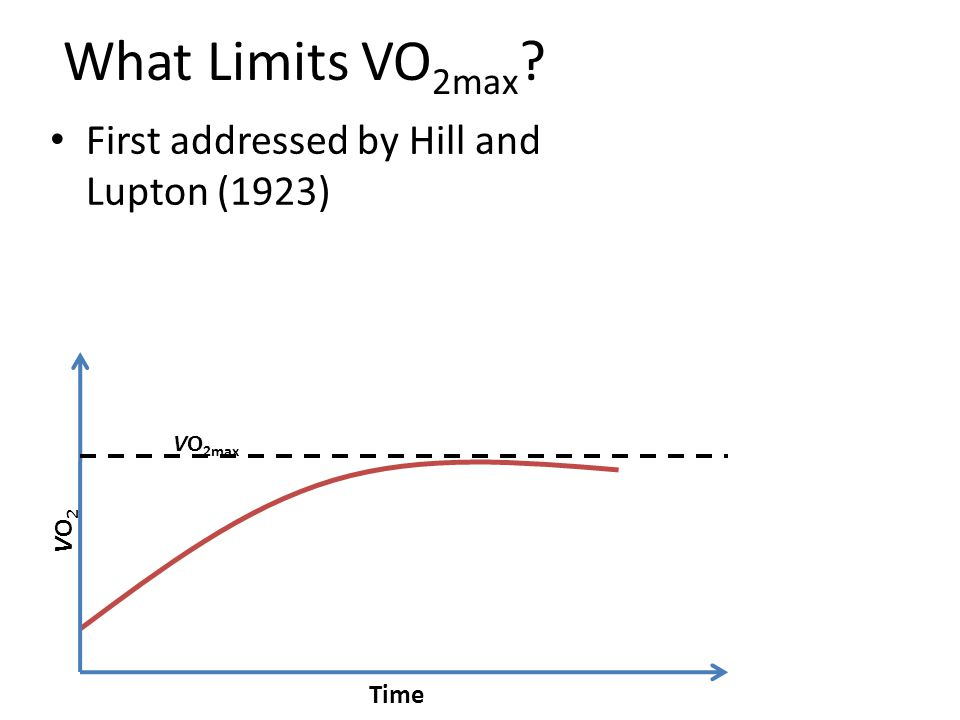 What Limits VO 2max ? First addressed by Hill and Lupton (1923) Time VO 2max VO2VO2