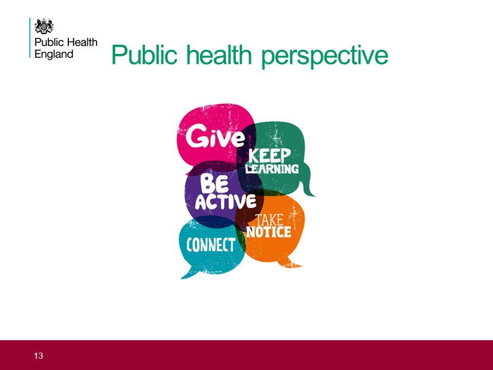 Public health perspective 13