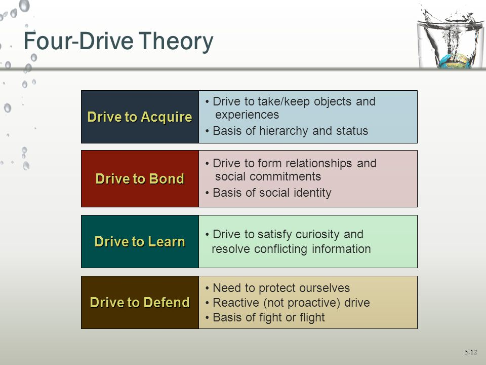 5-12 Four-Drive Theory Drive to Bond Drive to Learn Drive to form relationships and social commitments Basis of social identity Drive to satisfy curio