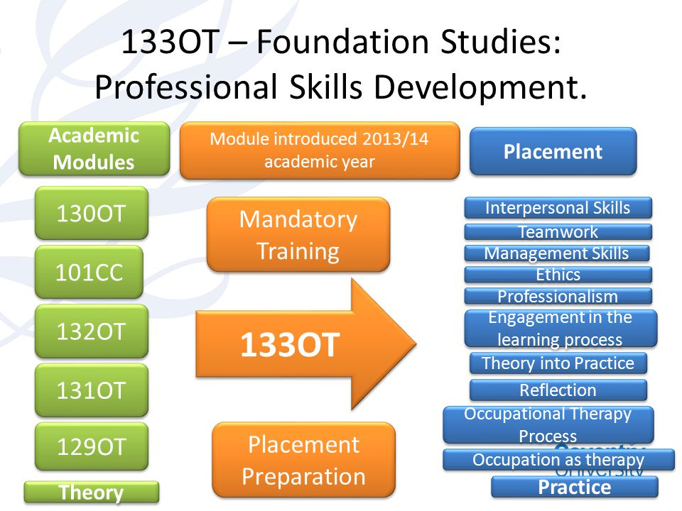 133OT – Foundation Studies: Professional Skills Development. 130OT Academic Modules 101CC 132OT 131OT 129OT Theory Placement Interpersonal Skills Team