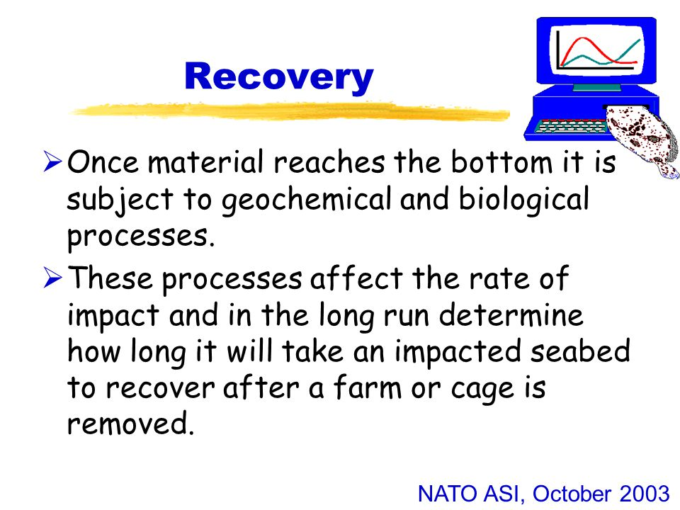 NATO ASI, October 2003 Recovery  Once material reaches the bottom it is subject to geochemical and biological processes.
