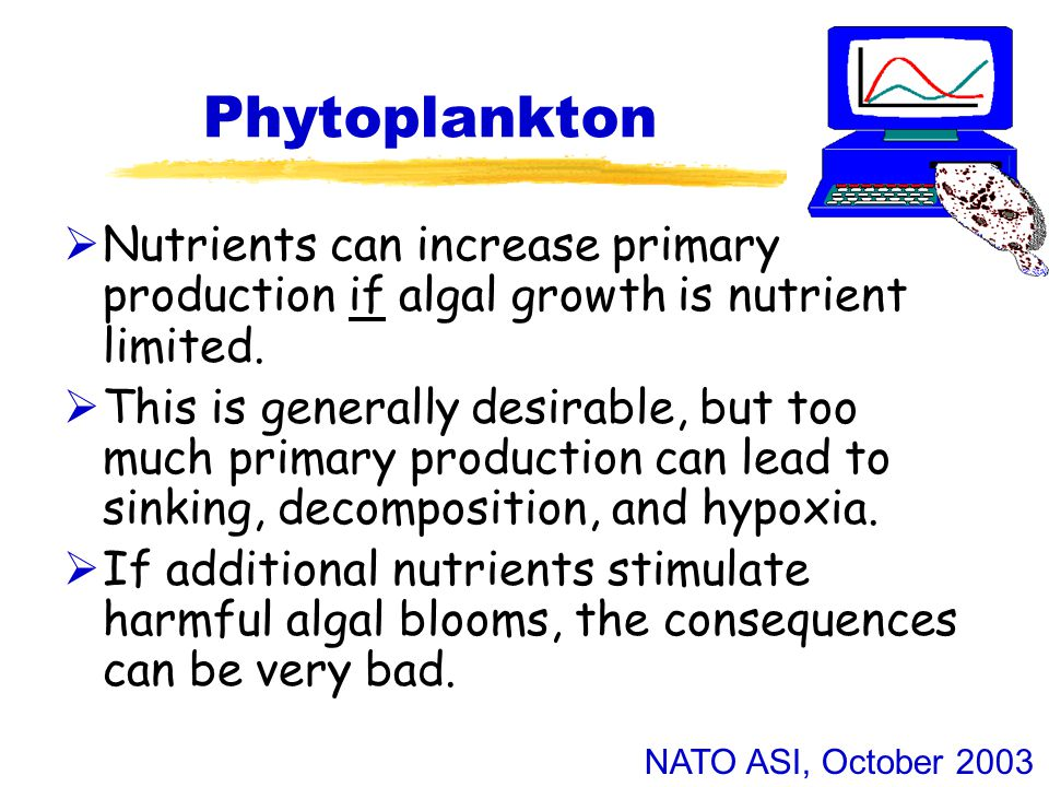 NATO ASI, October 2003 Phytoplankton  Nutrients can increase primary production if algal growth is nutrient limited.  This is generally desirable, b