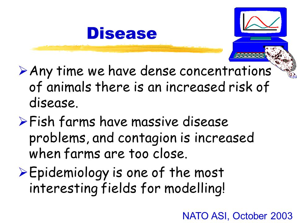 NATO ASI, October 2003 Disease  Any time we have dense concentrations of animals there is an increased risk of disease.  Fish farms have massive dis