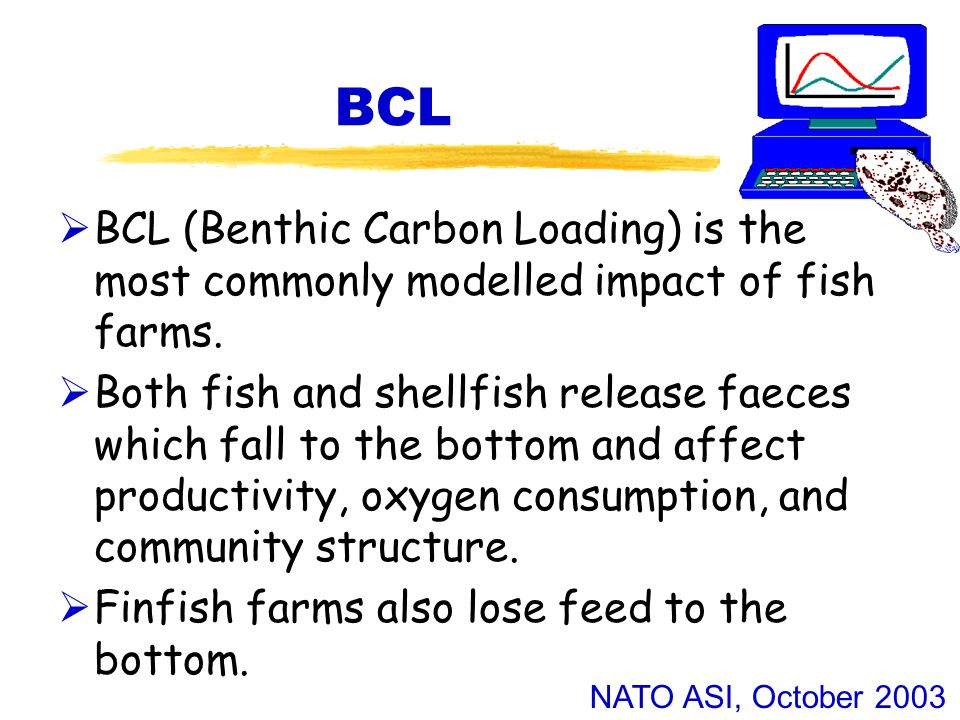 NATO ASI, October 2003 BCL  BCL (Benthic Carbon Loading) is the most commonly modelled impact of fish farms.