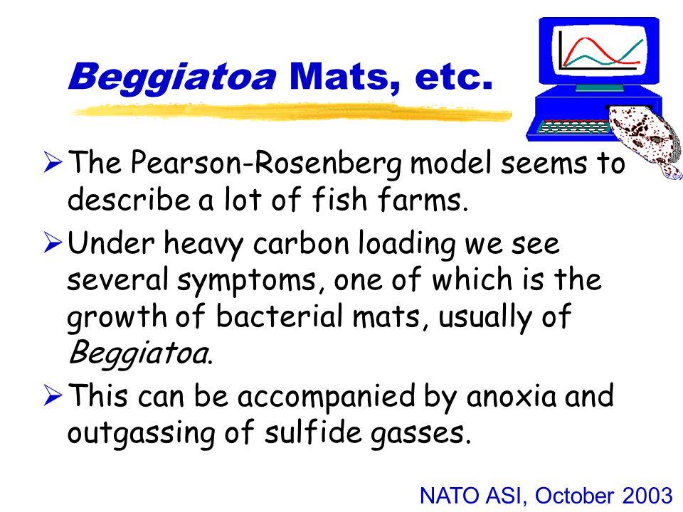 NATO ASI, October 2003 Beggiatoa Mats, etc.  The Pearson-Rosenberg model seems to describe a lot of fish farms.  Under heavy carbon loading we see s