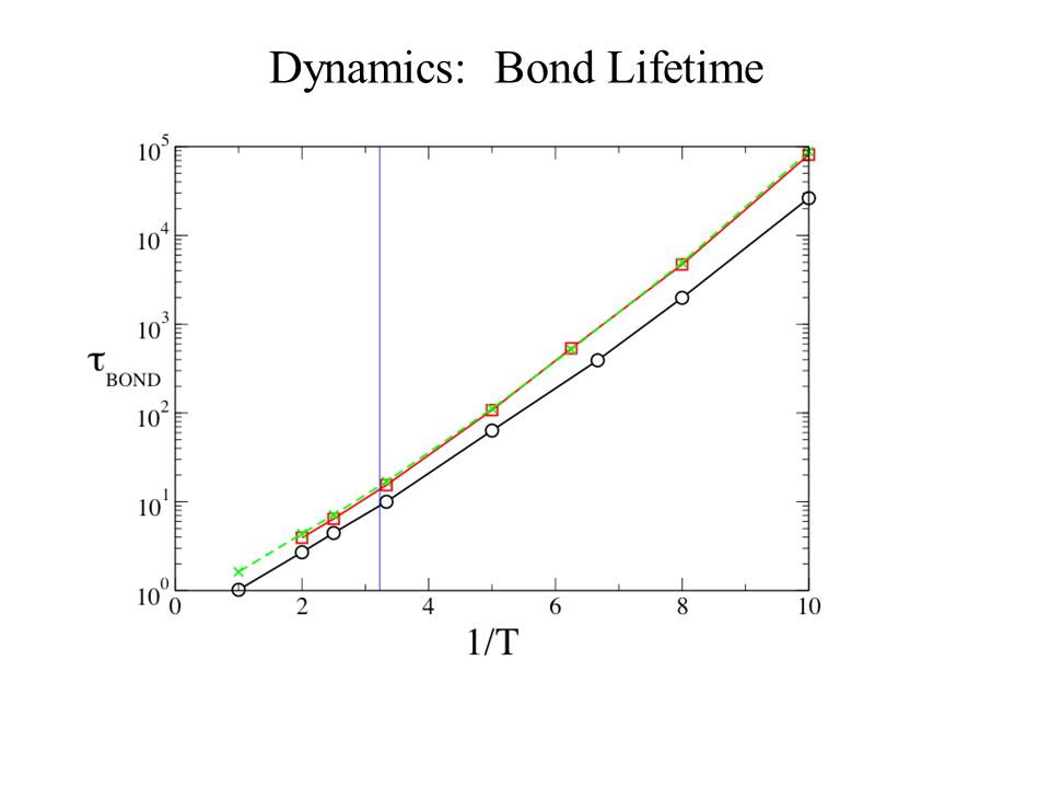 Dynamics: Bond Lifetime
