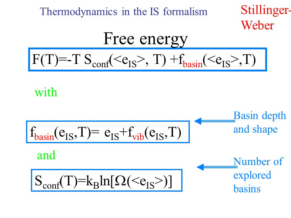 Thermodynamics in the IS formalism Stillinger- Weber F(T)=-T S conf (, T) +f basin (,T) with f basin (e IS,T)= e IS +f vib (e IS,T) and S conf (T)=k B ln[  ( )] Basin depth and shape Number of explored basins Free energy