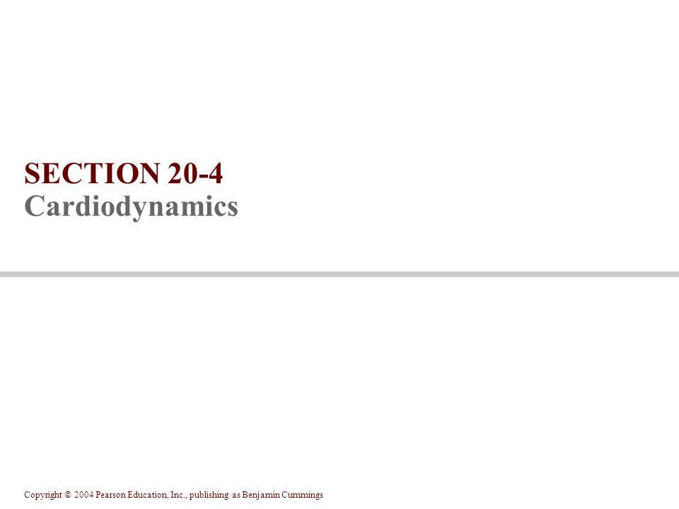 Copyright © 2004 Pearson Education, Inc., publishing as Benjamin Cummings SECTION 20-4 Cardiodynamics