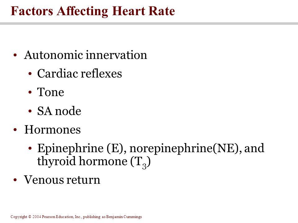 Copyright © 2004 Pearson Education, Inc., publishing as Benjamin Cummings Autonomic innervation Cardiac reflexes Tone SA node Hormones Epinephrine (E)