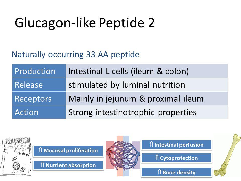 Glucagon-like Peptide 2 Naturally occurring 33 AA peptide  Bone density  Intestinal perfusion  Nutrient absorption  Mucosal proliferation  Cytopr