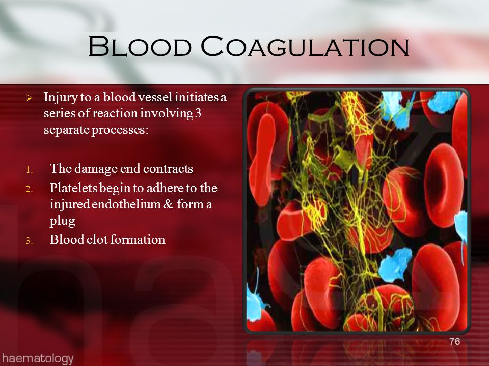 Blood Coagulation  Injury to a blood vessel initiates a series of reaction involving 3 separate processes: 1. The damage end contracts 2. Platelets b